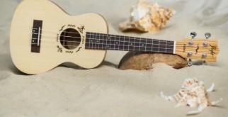 Знакомство с укулеле: игра аккордами, советы по освоению инструмента